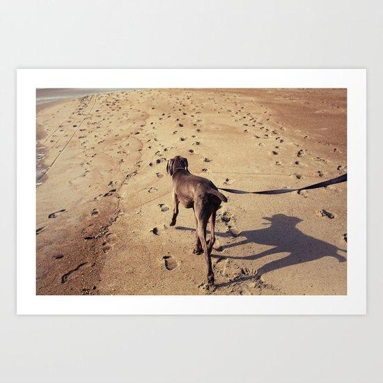 beachdog Art Print