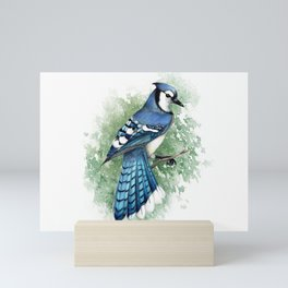 Blue Jay In Watercolor Mini Art Print