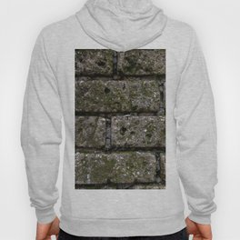 Another Brick in the Wall Hoody