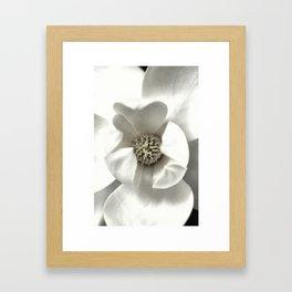Classy Magnolia Framed Art Print