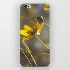 Tilted iPhone & iPod Skin