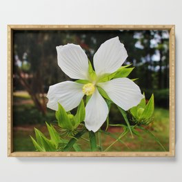 White Swamp Hibiscus Serving Tray