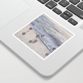 Sandpipers  Sticker
