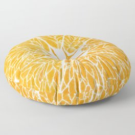 Orange you glad . . . Floor Pillow
