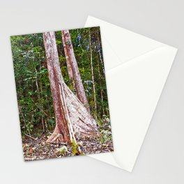 Buttress root in the rainforest Stationery Cards