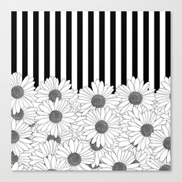 Daisy Stripe Canvas Print