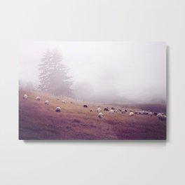 grazing Metal Print