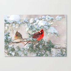Remembering.... (Northern Cardinals) Canvas Print
