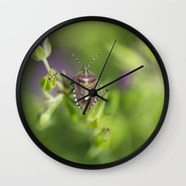 Spring bug Wall Clock