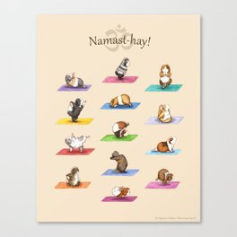 The Yoguineas - Yoga Guinea Pigs - Namast-hay! Canvas Print