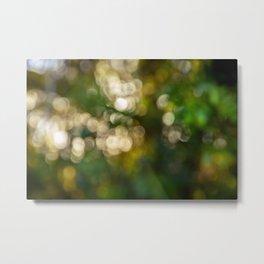 Background bokeh  sunset image - Sun through the tree branches Metal Print