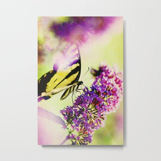 Butterfly Beauty Metal Print
