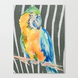 When a parrot met a zebra Canvas Print