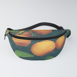 Sweet tangerines Fanny Pack