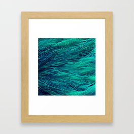 Teal Feathers Framed Art Print