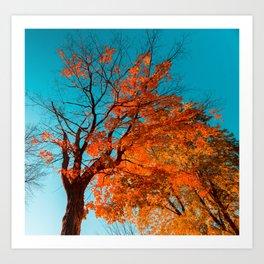 Autumn Cyan Art Print
