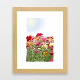 Bloom Where You're Planted! Framed Art Print
