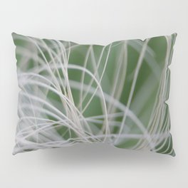 Abstract Image of Tropical Green Palm Leaves  Pillow Sham