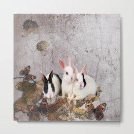 cute rabbits Metal Print