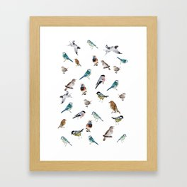 I love birds Framed Art Print