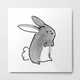 Petit lapin! Metal Print