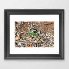 Out in the Sticks Framed Art Print