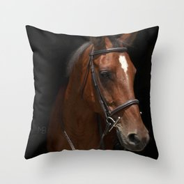Downtown Abby Throw Pillow