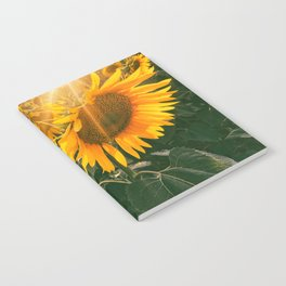 summer in the fields Notebook
