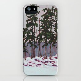 Frozen Island, Algonquin Park iPhone Case