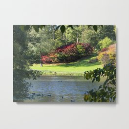 View Over the Lake Metal Print
