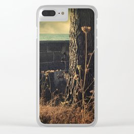 Leaving Home Clear iPhone Case
