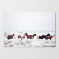 oregon Canvas Prints featuring Winter Horseland by Kevin Russ