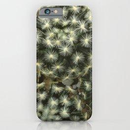 Boerum Hill iPhone Case