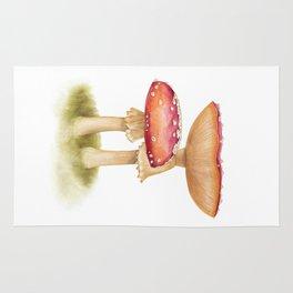 Mushroom Painting   Fly Agaric   AMANITA MASCARA   Watercolour Rug