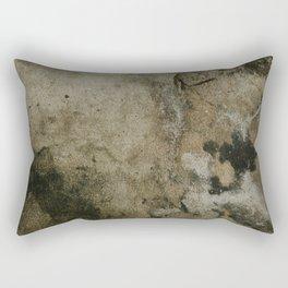 ABDITORY Rectangular Pillow