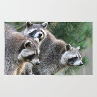 racoon Area & Throw Rugs featuring Racoon 001 by jamfoto