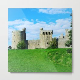 Castle on a hill Metal Print