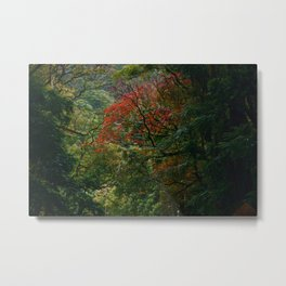 Road to Hana II Metal Print