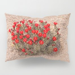 Sandia Cactus Flowers Pillow Sham