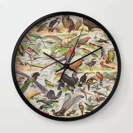 Adolphe Millot Birds Vintage Scientific Illustration Old Le Larousse pour tous llustration Wall Clock