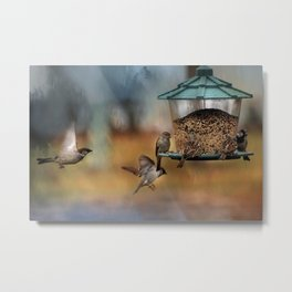 True Colors - Birds at Feeder Metal Print
