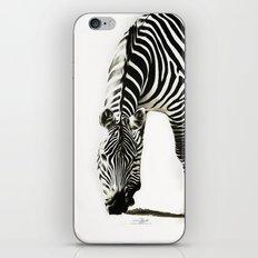 Zebra - paint iPhone & iPod Skin