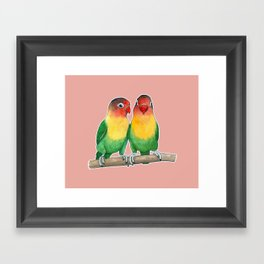 Fischer's lovebirds Framed Art Print