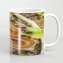 Nature in the Spring Coffee Mug