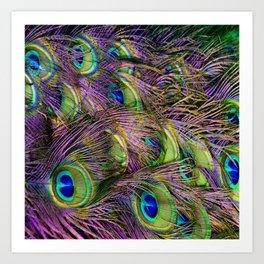 art nouveau bohemian turquoise purple teal green peacock feather Art Print