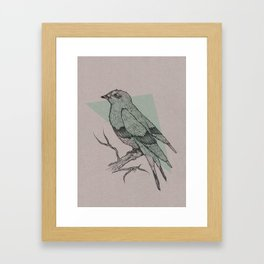 Bird Fascination Framed Art Print