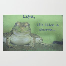 Life Lessons By A Frog Rug