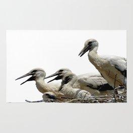 Storks and Fledglings Vector Rug