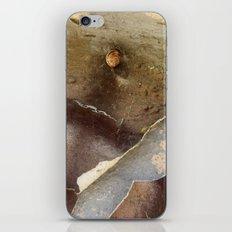 Graffiti Snail iPhone & iPod Skin