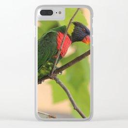 Rainbow Lorikeet Clear iPhone Case